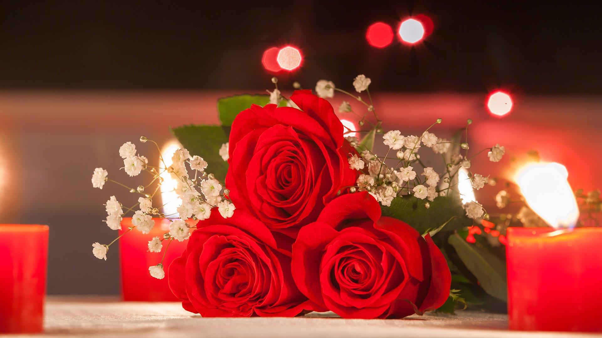 爱情美图,爱情美图,唯美温馨,玫瑰